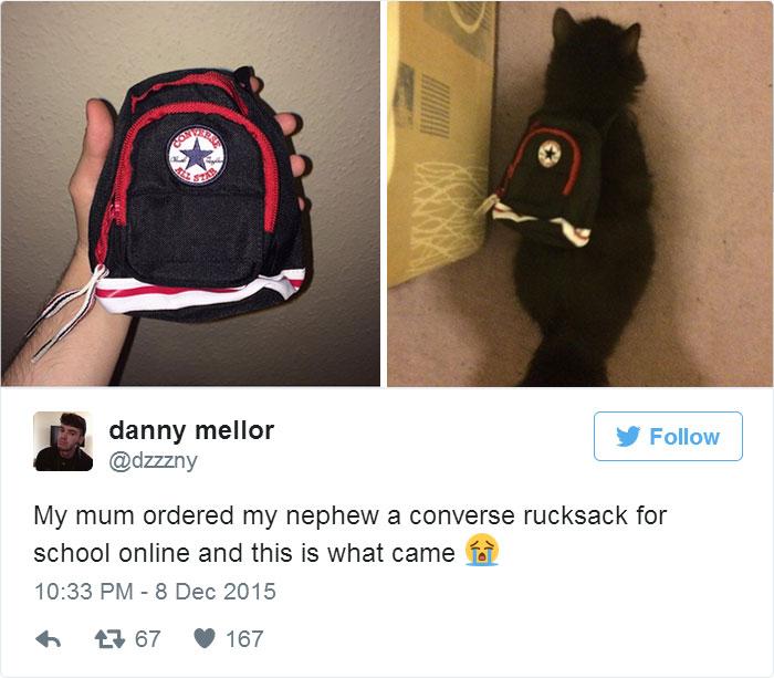 Era para uma criança, mas ficou melhor em um gatinho! Foto: