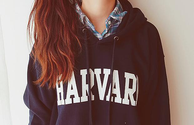Que tal fazer aulas gratuitas de fotografia em Harvard?