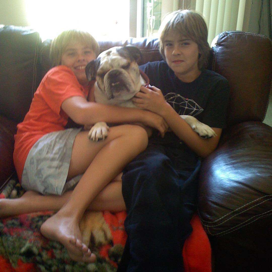 dylan-cole-sprouse-cachorro-morreu
