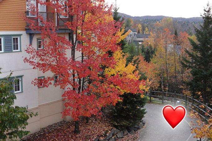 Diário de intercâmbio: o outono canadense merece ser enaltecido!