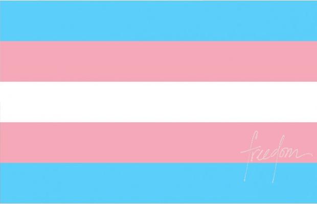 Bandeira do Orgulho Trans | Orgulho Transexual