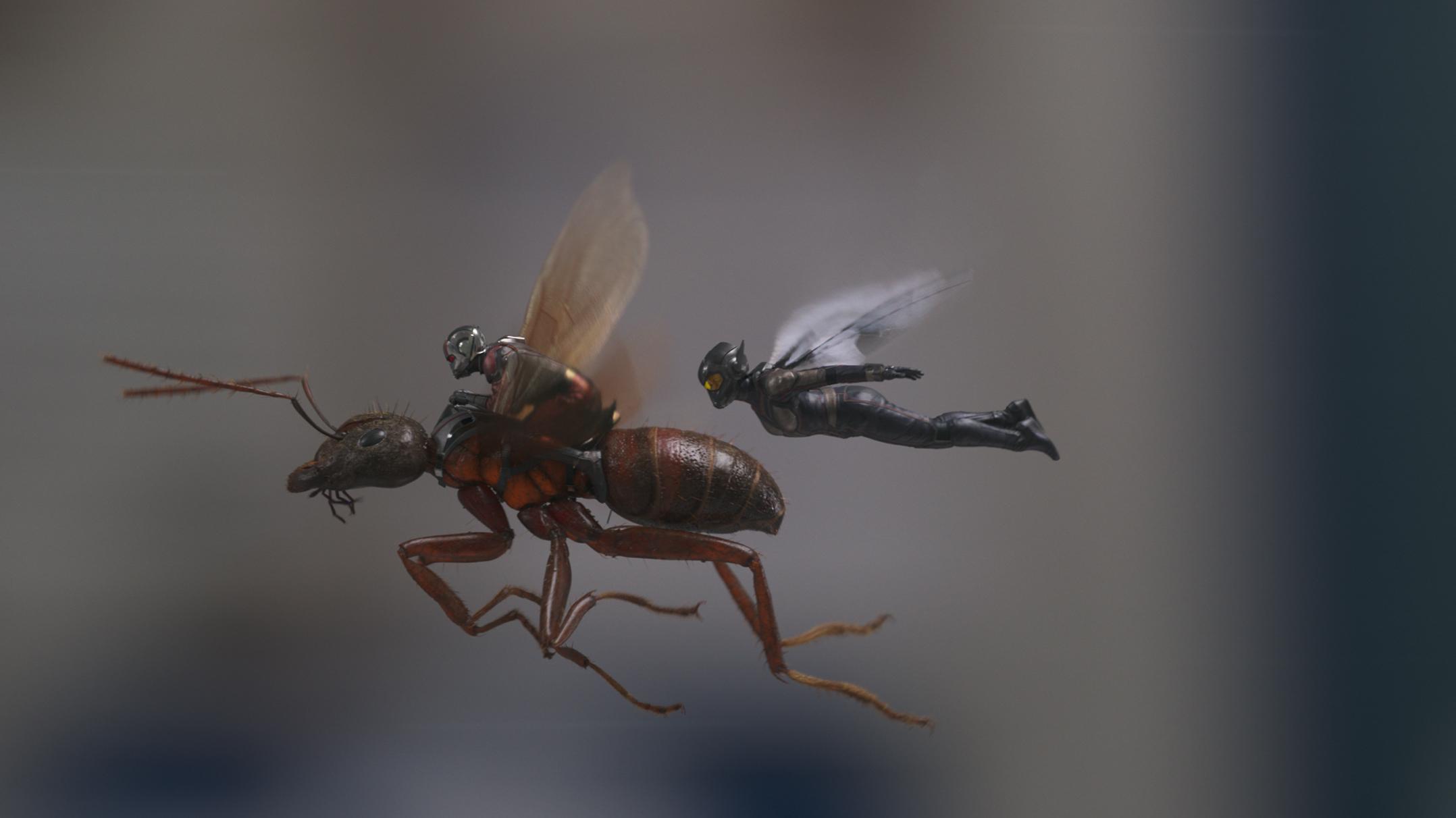 homem-formiga-e-a-vespa