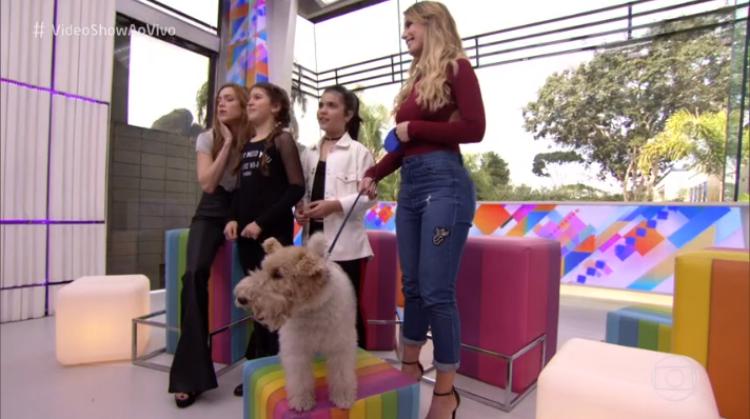 globo-cachorro-video-show