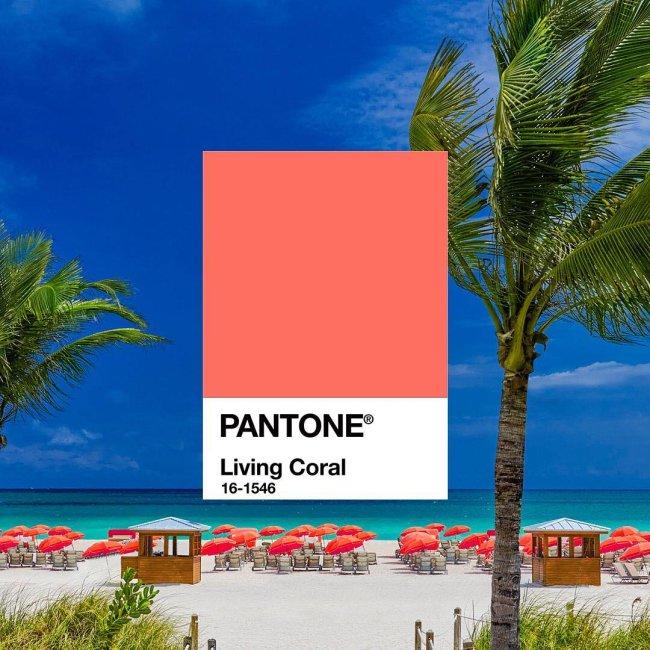 living-coral-cor-de-2019-pantone-1
