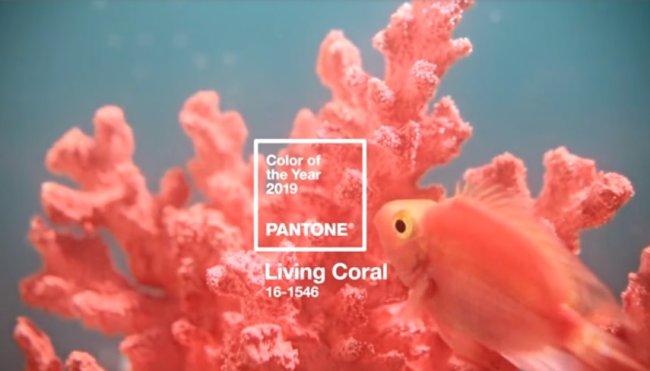 living-coral-cor-de-2019-pantone