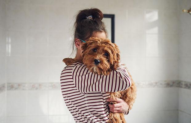 Blog da Galera: O que você pode fazer para ajudar a causa animal?