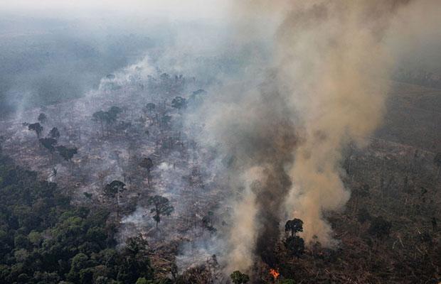 Governo Bolsonaro rejeita ajuda de US$ 20 milhões para Amazônia