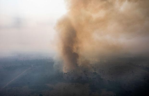 O que aconteceria no Brasil e no mundo se a Amazônia deixasse de existir?