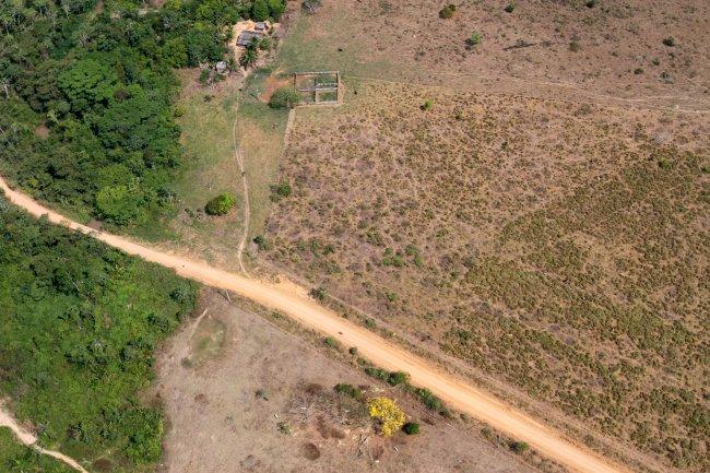 Foto do desmatamento na Amazônia