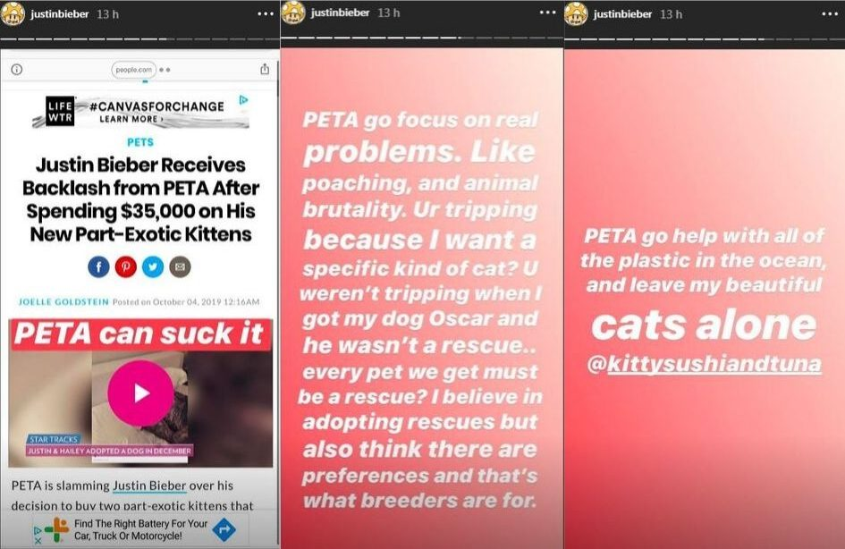 justin-bieber-rebate-criticas-sobre-gatos