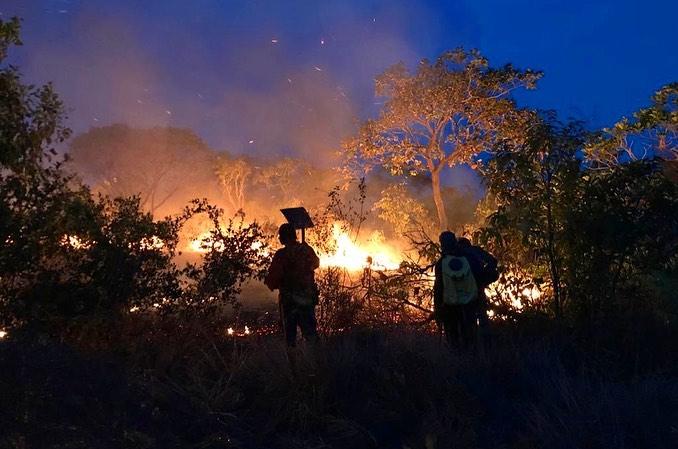 Governo X ONGs: entenda o que está acontecendo em Alter do Chão, no Pará