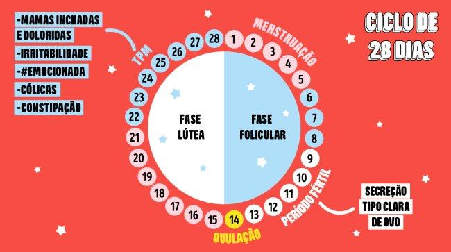 tabela mostrando as fases do ciclo menstrual