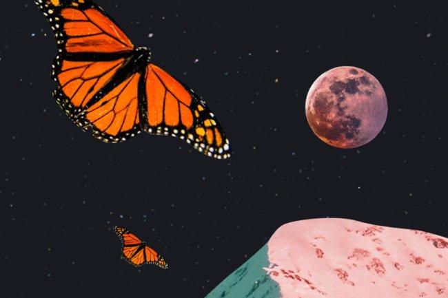 horoscopo-dia-previsoes-signos-capricho-9