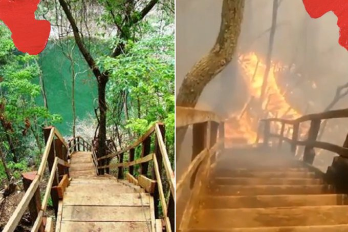 Os antes e depois do Pantanal que mostram os estragos do fogo na região