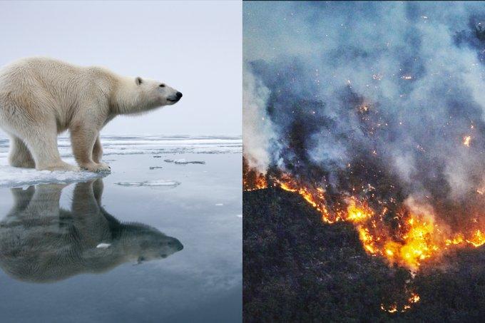 2020 deve ser o ano mais quente da Terra; setembro bateu todos os recordes