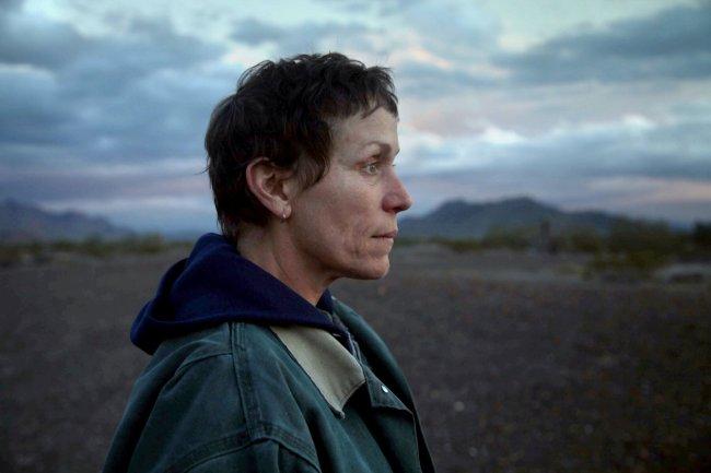 Cena do filme Nomadland; protagonista olha para o horizonte