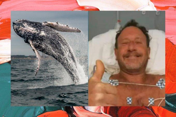 Homem sobrevive após ser engolido por baleia e conta como escapou