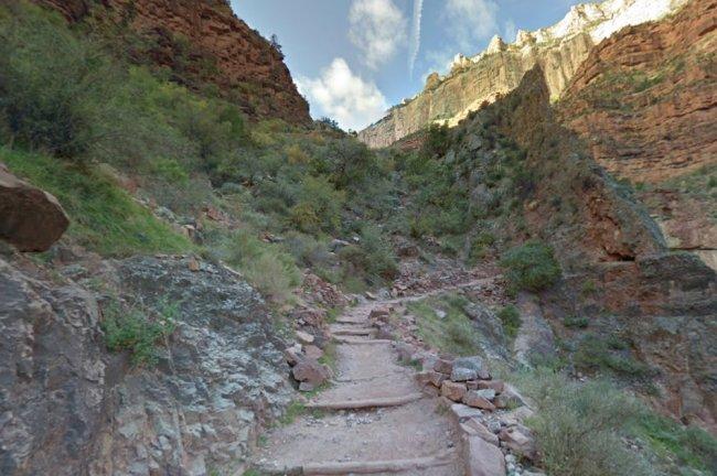 Imagem de uma trilha montanhosa em meio à mata