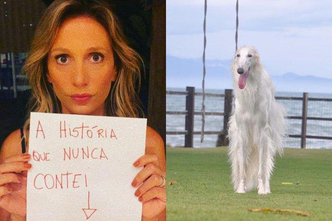 """Luisa Mell rebate acusação de roubo de cachorro: """"Apreendido pela polícia"""""""