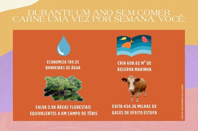 Tabela mostrando os impactos de ficar um ano sem comer carne apenas uma vez por semana