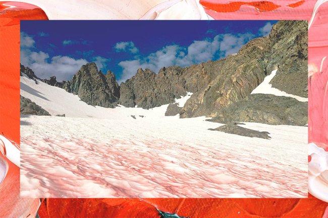 Imagem mostra neve com coloração rosa no Monte Ritter, nos Estados Unidos