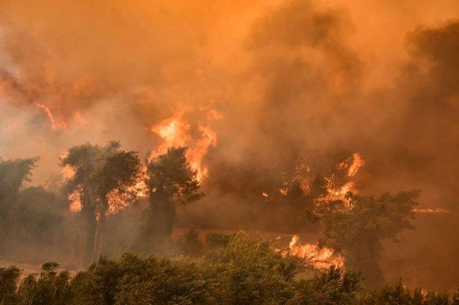 Imagem de uma floresta tomada de chamas; incêndios estão sendo registrados na Turquia