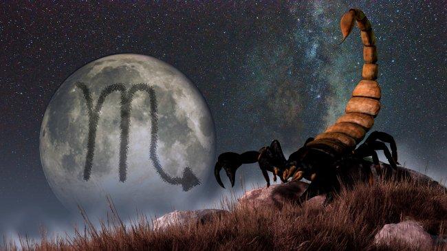 Ilustração de um descampado, com um escorpião grandão na grama verde escura. Ao fundo, uma Lua Cheia brilha com o símbolo de Escorpião na astrologia dentro dela