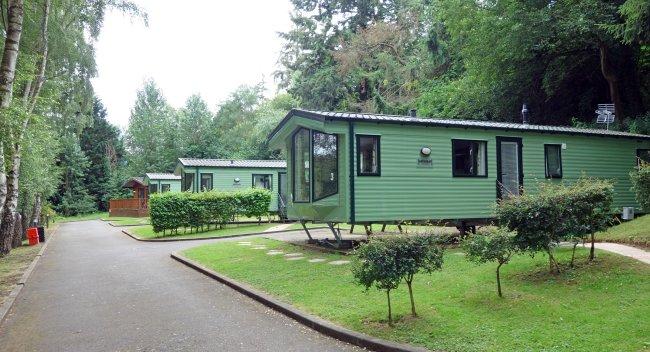 Foto de um trailer verde, em meio a algumas árvores